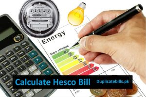 Hesco Bill Calculator is a best tool to check your bills online.